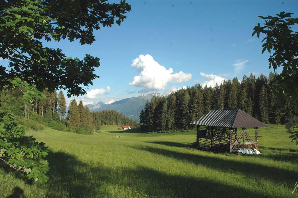 Ferienhaus Maar1 am Goldberg - Kesn im Maarfeld